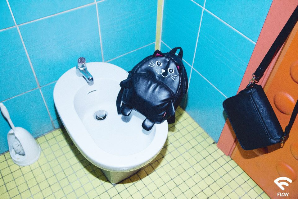 cat apsack in toilet by Anna Qzzontin