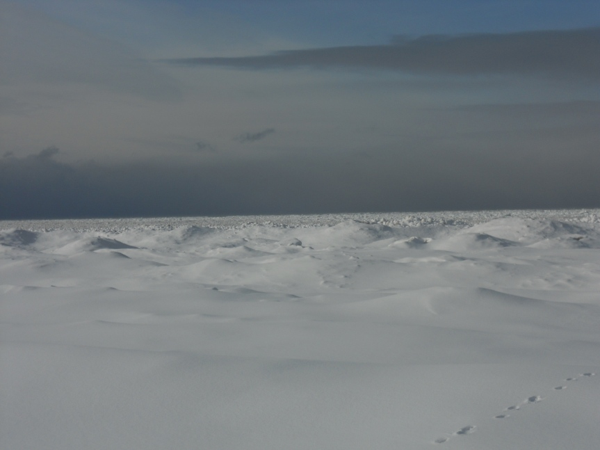 snow landscape in canada frozen ontario lake
